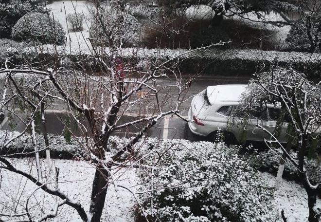 山东这一波降雪持续更新 快来晒晒你家雪景