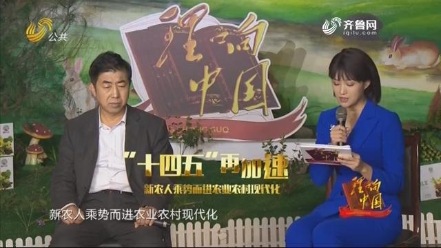 """20201128《理响中国》:""""十四五""""再加速 新农人乘势而进农业农村现代化"""