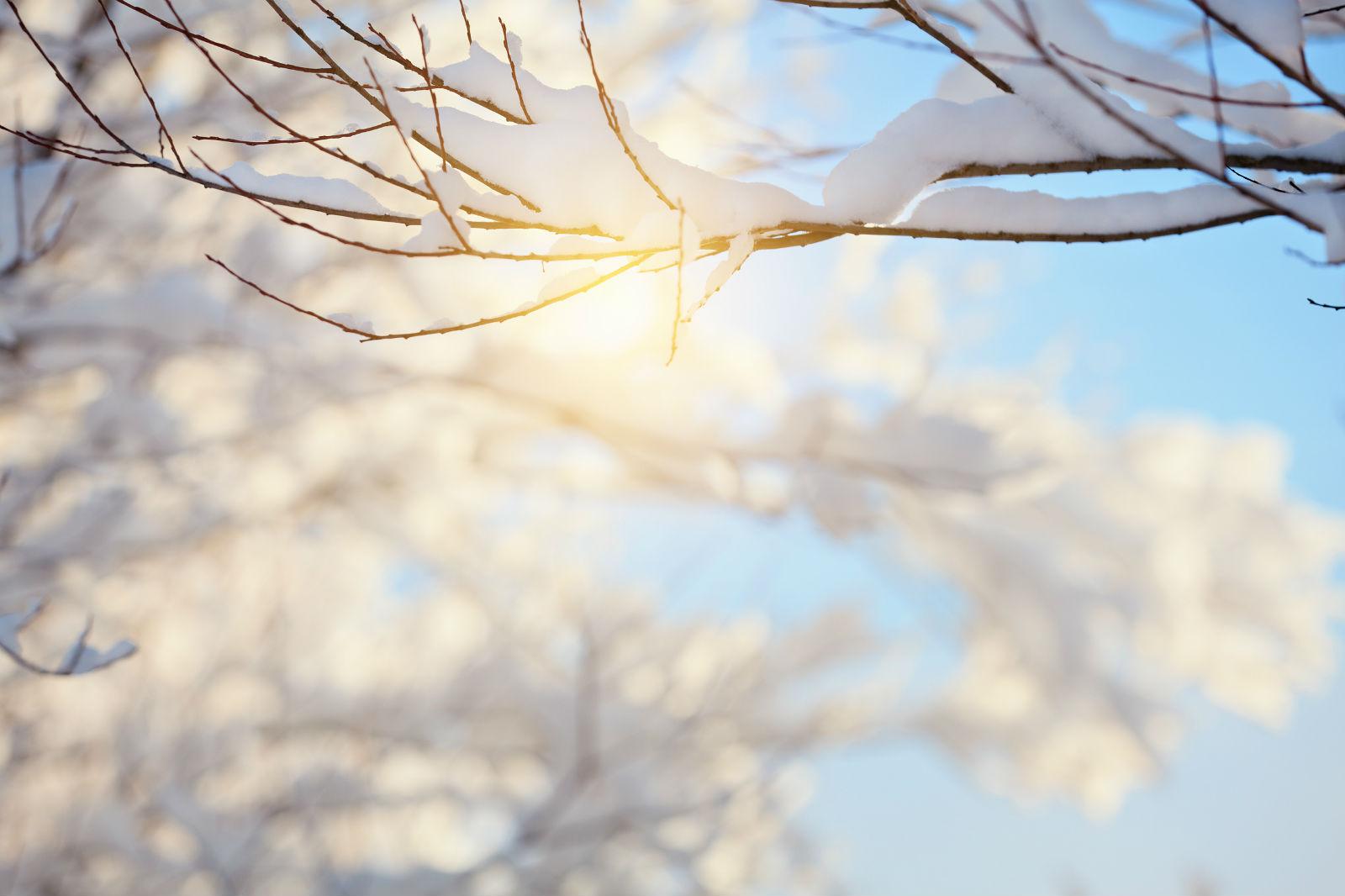 今日大雪!防寒要得当 单纯补阳不可尝