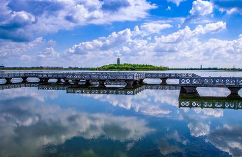 东营市全力建设富有活力的现代化湿地城市(下)