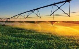 淄博3个农业科研项目通过市级鉴定 其中一项达国内领先水平