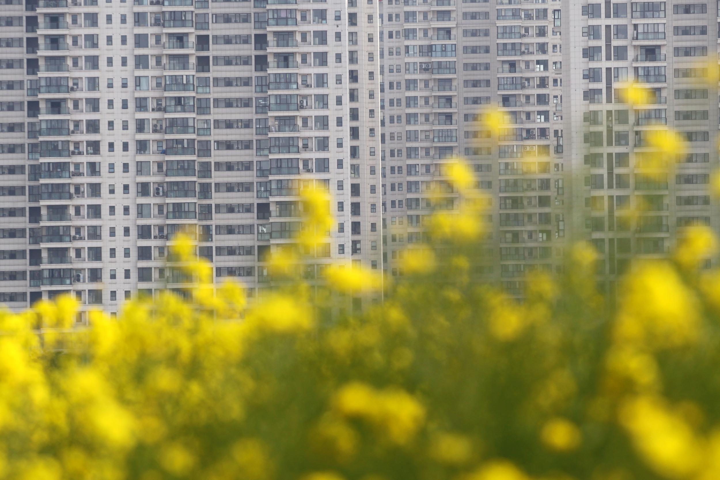 """2020年中国14城""""卖地""""收入超千亿元"""