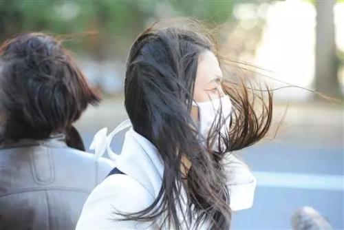 阵风8级!青岛继续发布大风蓝色预警信号 注意防范