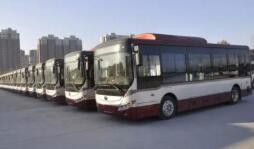 1月13日起淄博这条公交线路有调整