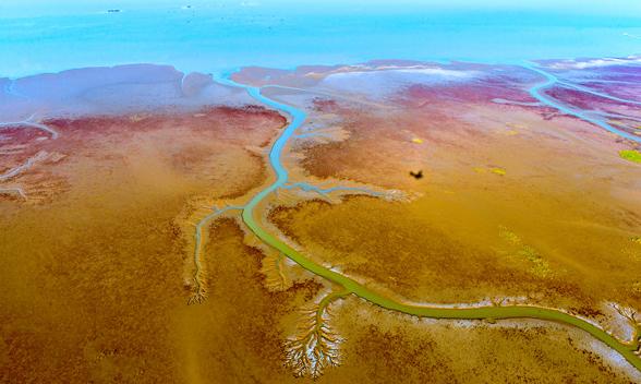 有河自远方来,不亦乐乎?——黄河流域生态保护和高质量发展五札