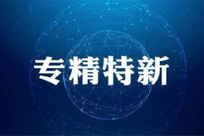 """淄博高新区两企业获称国家专精特新""""小巨人"""""""