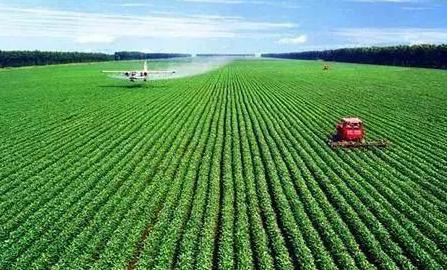 东营28家合作社被认定为2020年省级农民合作社示范社