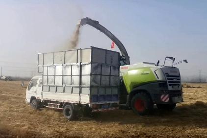 """东营市农业机械化促进农作物秸秆综合利用 助力秸秆""""变废为宝"""""""