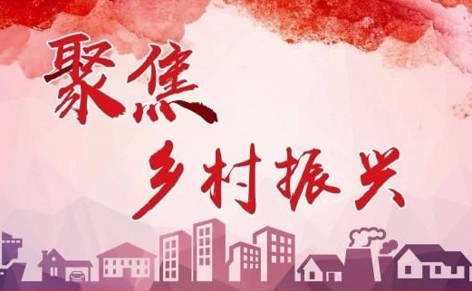 """省派大王镇乡村振兴服务队:铸造产业""""金钥匙"""" 解锁乡村振兴路"""