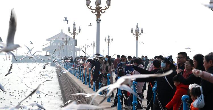 春节前,俯瞰不一样的栈桥!