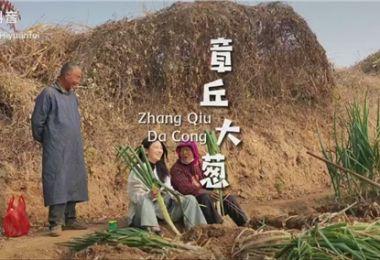 """""""冬游齐鲁""""短视频挑战赛优秀作品:章丘大葱"""
