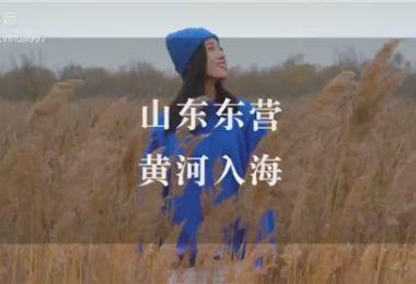 """""""冬游齐鲁""""短视频挑战赛优秀作品:黄河入海口"""