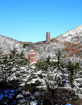 新春迎首次降雪!白雪覆盖下的威海荣成赤山美极了