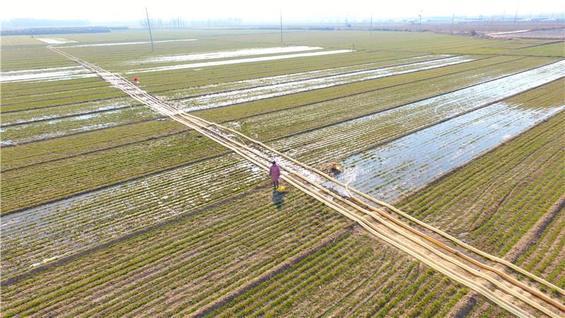 聊城提闸放水保春灌 满足沿河农田灌溉需求