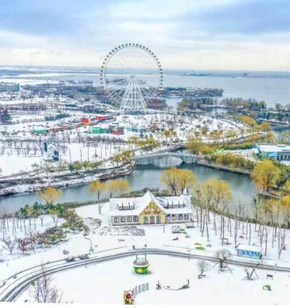 一场雪,让山东这些城市美成童话!各地雪景美图来袭