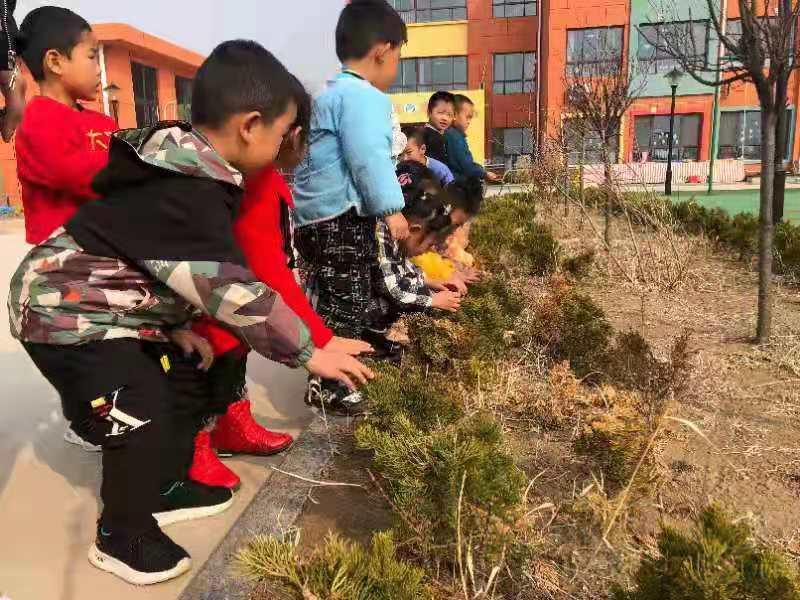 """利津县陈庄镇付窝幼儿园 """"拥抱春天 亲吻绿色""""植树节活动"""