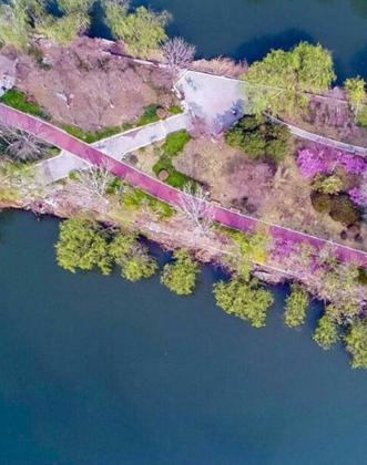 詩畫山東|春風又綠清河畔!俯瞰濟南小清河清新畫卷