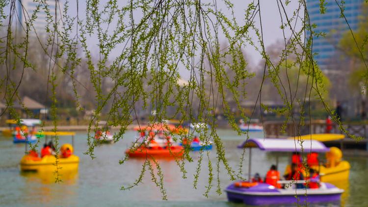 淄博:春暖花开 市民畅享春日好风光
