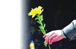 清明假期淄博市累计接待现场祭扫群众12.3万人次