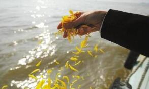 今年海葬活动正式开始报名 张店区户籍逝者减免1000元