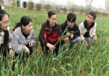 淄博大学教师携手学生工作团把农业科技送到田间地头 助推农民致富