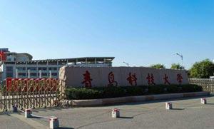 青岛科技大学淄博教科产融合基地建设项目计划下月开工