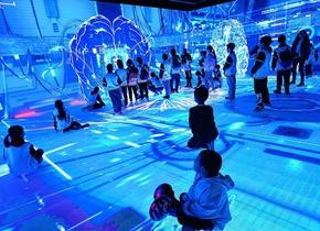 青岛小学生体验人工智能 感受科技魅力