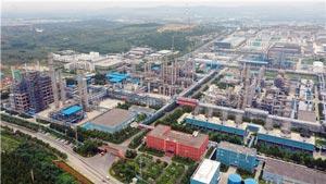 淄博:经济飘红为哪般 走进企业看一看