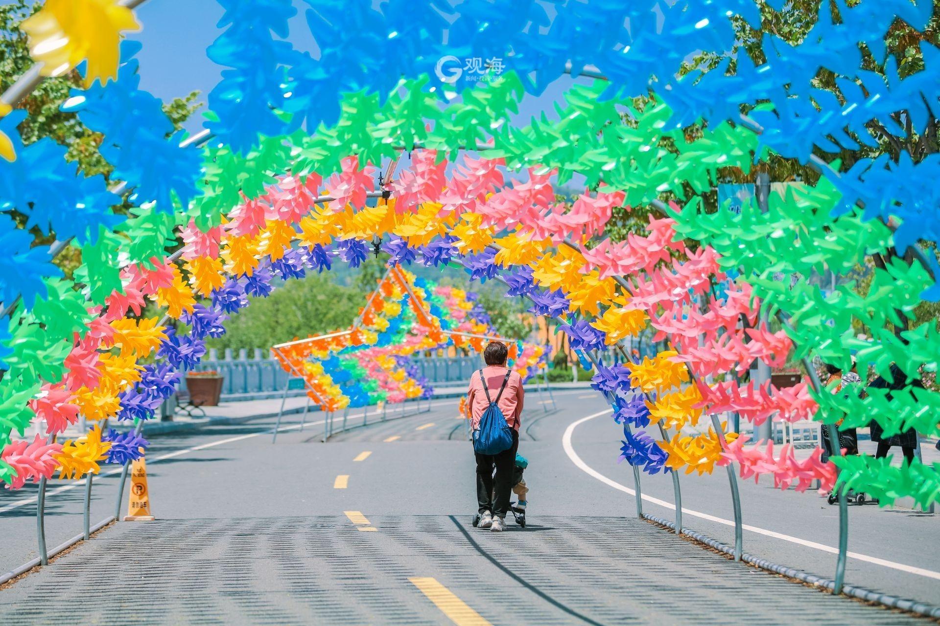 赏花风车季!10万只彩色风车等你来打卡