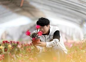 郯城:拓展线上渠道 助力花卉销售