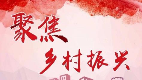 """广饶县东毛村:农旅融合""""融""""出乡村振兴新美景"""