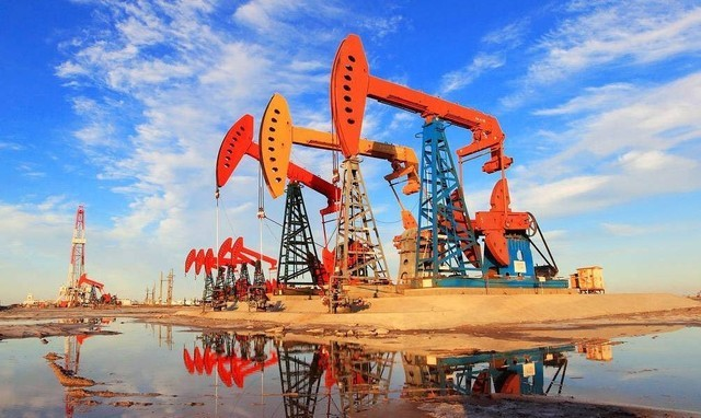河口区油地融合发展服务中心:办好民生实事 绘就油区和谐新景