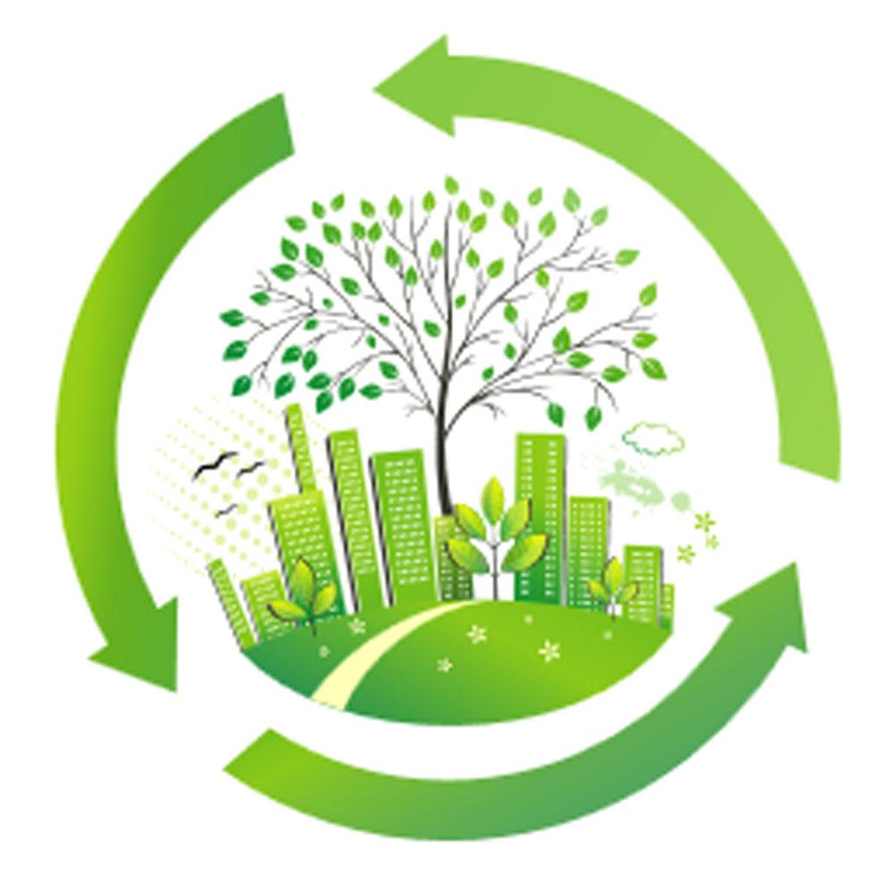 枣庄市生态环境保护重点领域工作推进会召开