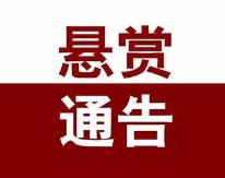 最高奖励270万元!青岛中院发布悬赏通告