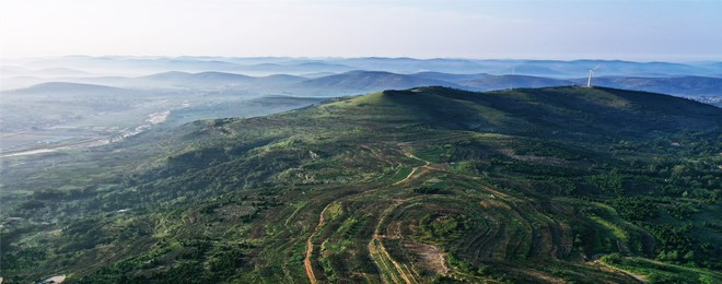闪电评论丨绿富同兴,让山东高质量发展底色更足