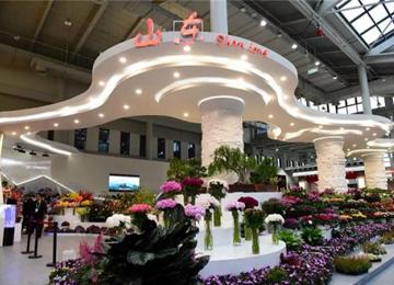 泰安市在第十届中国花卉博览会上喜获佳绩