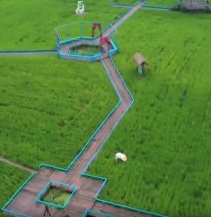 走进高青县黄河百里长廊