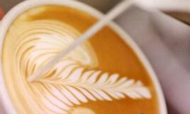 私人咖啡教室创始人谈生意经