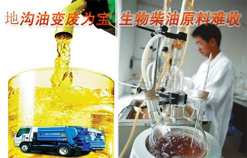 滨州:地沟油变废为宝