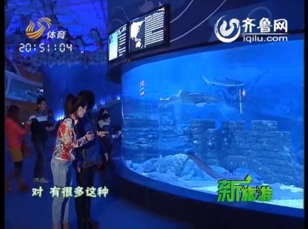 烟台海昌渔人码头:探秘神秘刺激的鲸鲨馆