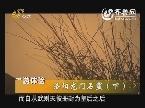 旅游体验:洛阳龙门石窟(下)