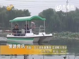 济南:白云湖鱼藕飘香 尝湖鲜大快朵颐