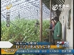 莱芜:市气象局打造特色廉政文化品牌