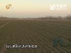 让土地更肥沃 农业发展根本出路在科技