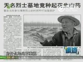 曹县:庄稼种进烈士墓 是真是假?