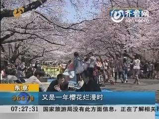 东京:又是一年樱花烂漫时