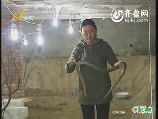 青州有位美女蛇