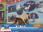 淄博:猴子骑山羊