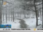 临沂蒙山:瑞雪降蒙山 美景醉游人