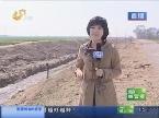 临邑:返青小麦浇不上水